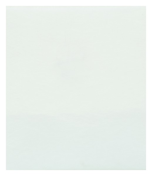 Glasvlies 0,5m² CS